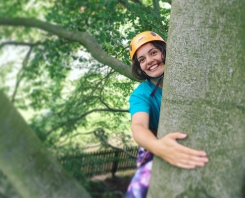 Climber in a beech tree